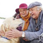 The Reasons Australian Seniors Prefer In-Home Care